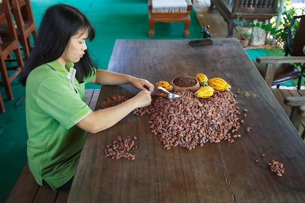 Handmatig inspecteren van cacaobonen op kwaliteit