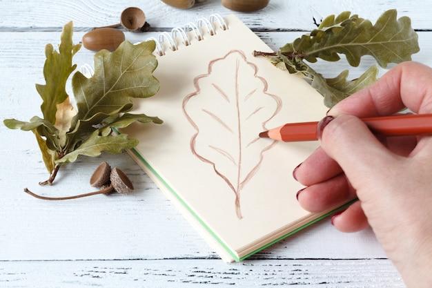 Handtekening met pen en schetsboek