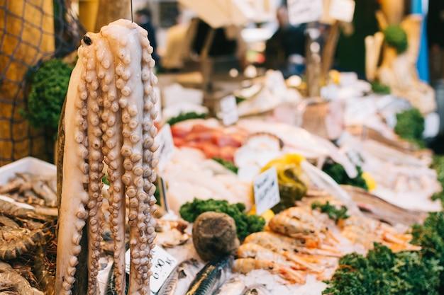 Hangende octopus bij vissenmarkt