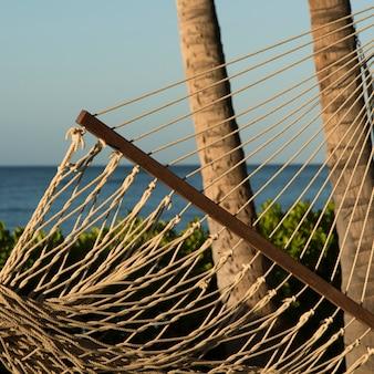 Hangmat op het strand, waikiki, honolulu, oahu, hawaii, usa Premium Foto