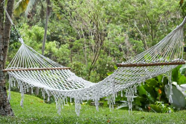 Hangmat tussen palmen in een prachtige tropische tuin in bali, indonesië, horizontale oriëntatie, close-up