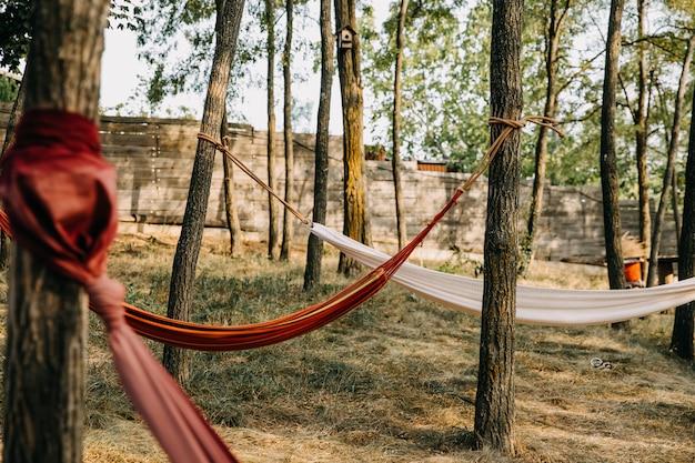 Hangmatten vastgebonden aan bomen in een bos