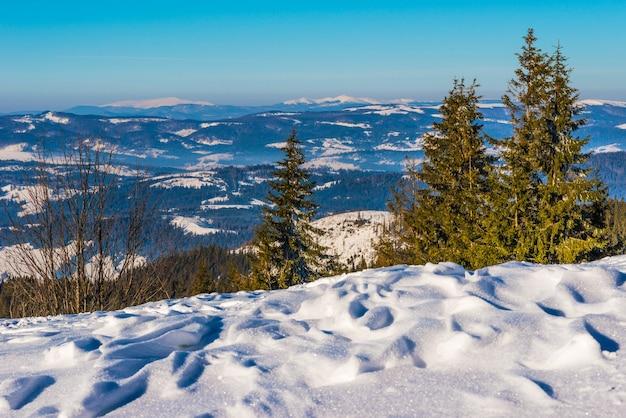 Hard winterlandschap besneeuwde sparren staan tegen een mistig bergachtig gebied op een koude winterdag