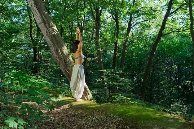 Harmonie met de natuur surya namaskar asana yoga pose