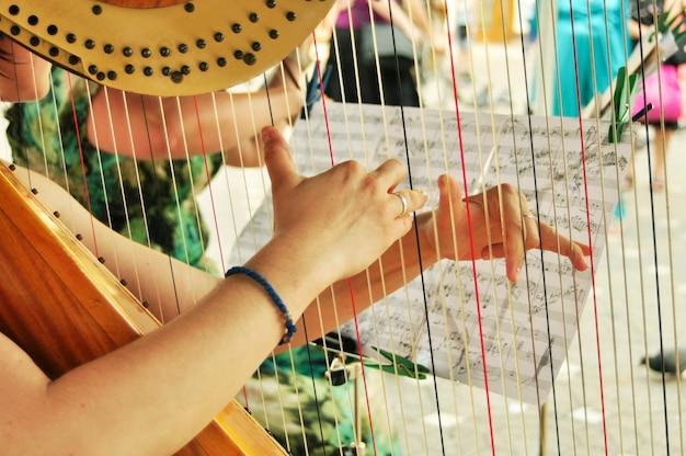Harp speler