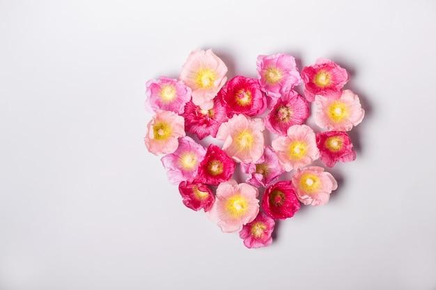 Hart van kaasjeskruid bloemen. minimalisme schoonheid, moederdag of valentijnsdag concept.