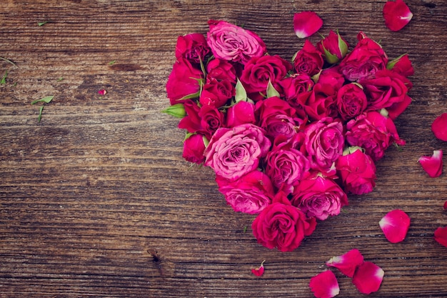 Hart van verse rozenknoppen geïsoleerd op een witte achtergrond, instagram gefilterd