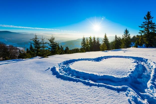 Hart vertrapt in de sneeuw met voeten in een sneeuwjacht op een heuvel met een prachtig uitzicht op het bos