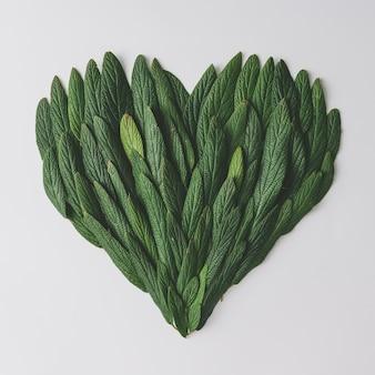 Hartvorm gemaakt van groene bladeren.