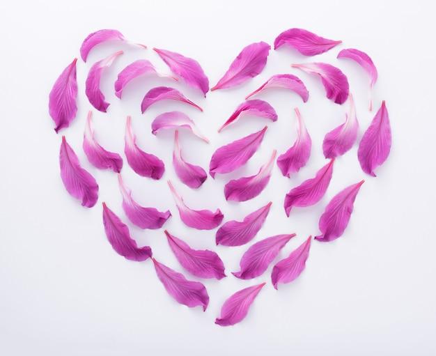 Hartvorm van paarse bloemblaadjes