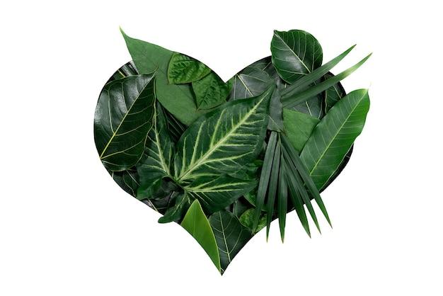 Hartvormige uitsparing met groene bladeren liefdesconcept plat leggen