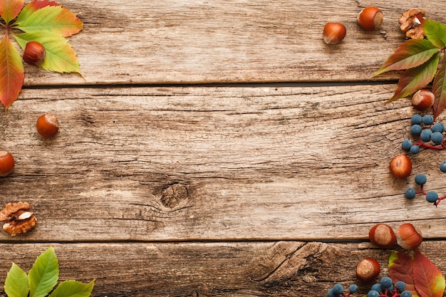 Hazelnoten en druivenkader op hout