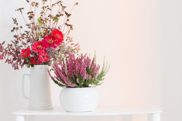 Heather in bloempot en boeket in vaas op witte achtergrond