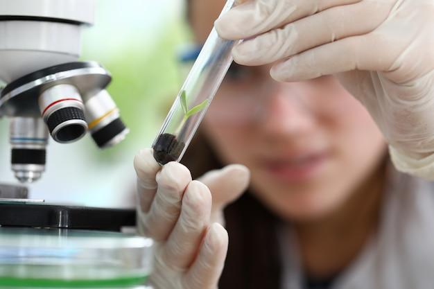 Hebal geneeskunde extract onderzoek concept Premium Foto