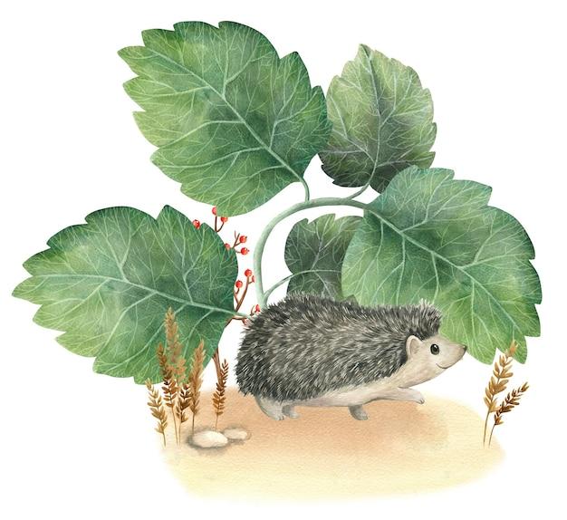 Hedgehog woodland verhalen aquarel illustratie
