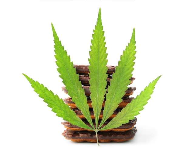 Heerlijke cbd cannabis chocolate chip cookie, groene hennepblaadjes decoratie