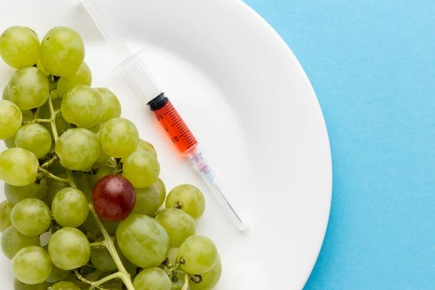 Heerlijke druiven ggo gemodificeerd voedsel