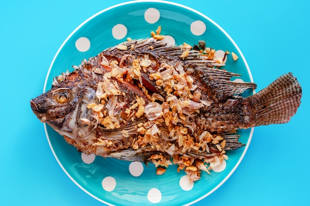 Heerlijke gebraden tilapia-vissen in stipplaat op blauwe achtergrond