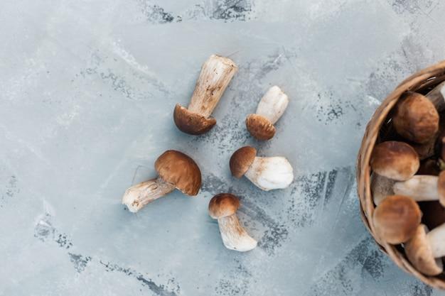 Heerlijke natuurlijke paddenstoelen met een mand liggen op een grijze achtergrond, bovenaanzicht