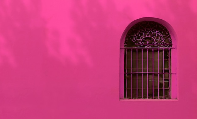 Heet roze smeedijzeren vintage raam op frans roze roze gekleurde muur met de gebladerte schaduwen