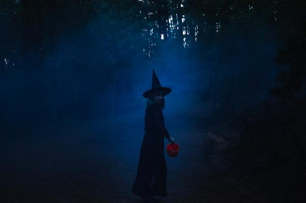 Heksenmeisje op pad in mist