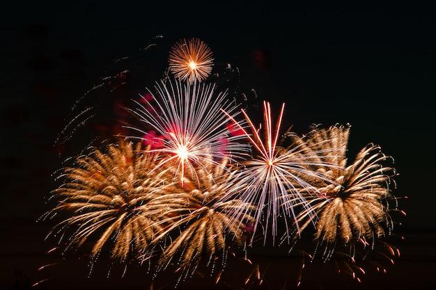 Helder gekleurd vuurwerk op een feestelijke nacht. explosies van gekleurd vuur in de lucht.