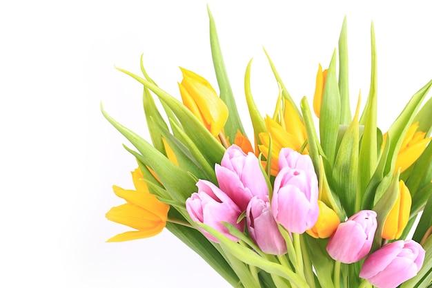 Helder kleurrijk boeket tulpen. lente kleurrijke bloemen geïsoleerd op een witte achtergrond