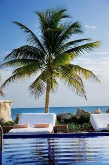 Helder mooi caribisch tropisch resort