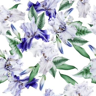 Helder naadloos patroon met bloemen. iris. aquarel illustratie. hand getekend.