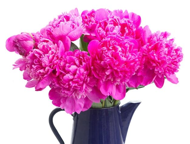 Helder roze pioen bloemen boeket in pot close-up geïsoleerd op wit