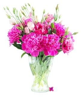Helder roze pioenroos en eustoma bloemenboeket in glasvaas die op witte achtergrond wordt geïsoleerd