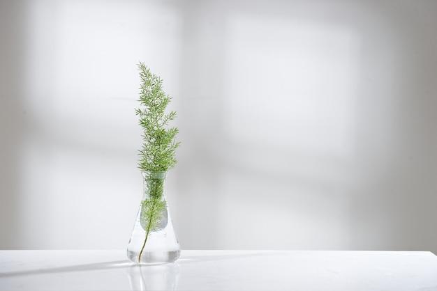 Helder water in glazen kolf en flesje met natuurlijk groen verlof op de achtergrond van het biotechnologische laboratorium