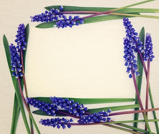 Helderblauwe lentebloemen met bladeren in framevorm