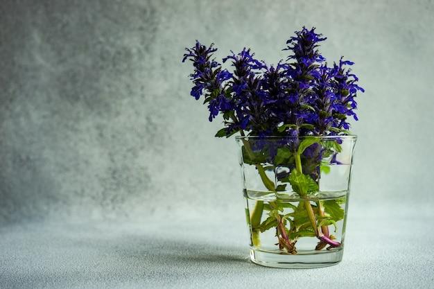 Helderblauwe salie of salvia bloemen op betonnen tafel