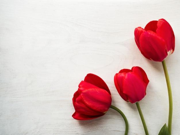 Heldere bloemen en een plek voor de inscriptie. close-up, geen mensen. gefeliciteerd voor familie, familieleden, vrienden en collega's