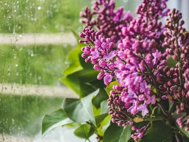 Heldere bloemen in een vaas tegen het raam