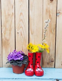 Heldere bloemen in potten, rode rubberen laarzen op een houten achtergrond. lentebloem stilleven.