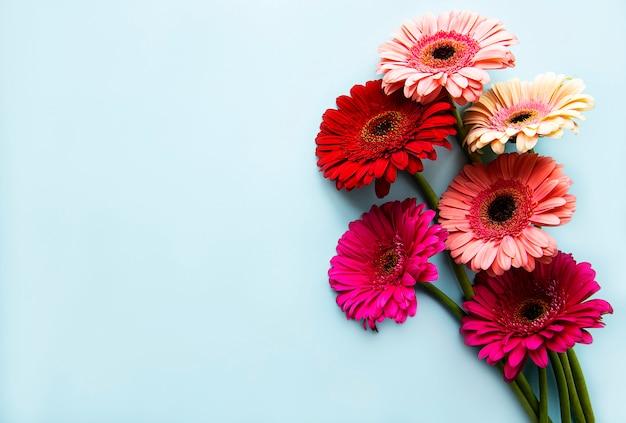 Heldere gerberabloemen op een blauwe achtergrond