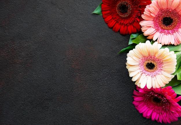 Heldere gerberabloemen op een zwarte concrete achtergrond. frame van bloemen, bovenaanzicht
