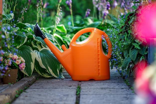 Heldere gieter voor het water geven van bloemen en planten in de tuin