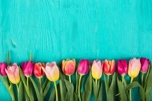 Heldere kleurrijke tulpen in rij