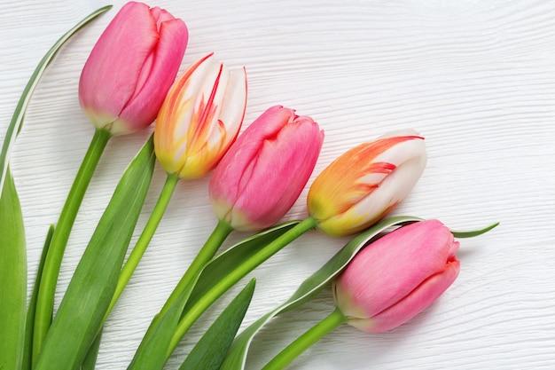 Heldere natuurlijke tulpenbloemen
