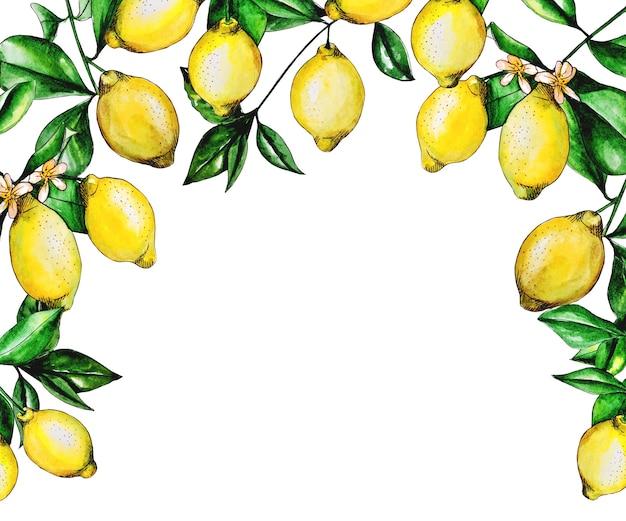 Heldere set citroenen