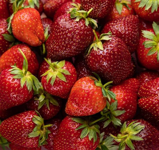 Helderrode aardbeien met groene stengels en bladeren