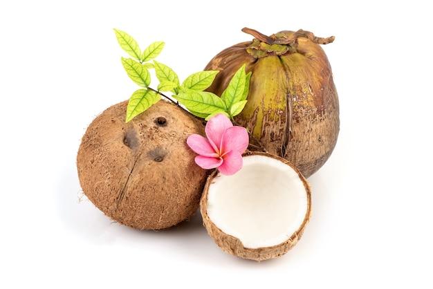 Hele kokosnoot geïsoleerd op wit.