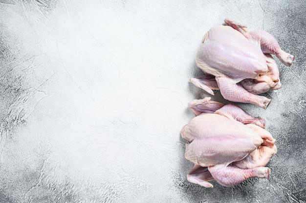 Hele rauwe vrije uitloop kip op wit. bovenaanzicht. kopieer ruimte