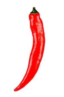 Hele rode pod van hete chili peper geïsoleerd op een witte achtergrond