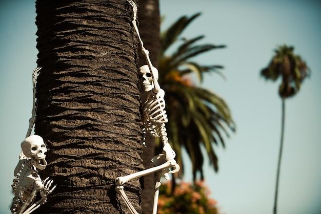 Helloween-skelet in de buurt van huisdecor. halloween-landschap. vreselijke vakantie thuis. halloween in de vs. tradities en huisdecoratie.