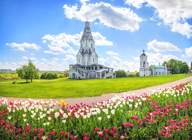 Hemelvaartkerk en tulpen in kolomenskoye in moskou op een zonnige zomerdag