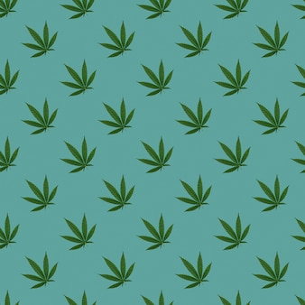 Hennep of cannabis laat naadloos patroon achter. close up van verse cannabisbladeren op blauwe achtergrond